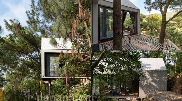 บ้านในป่าสวยๆ Forest House