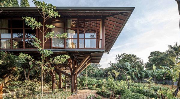 บ้านไม้ยกสูง Wooden Treehouse