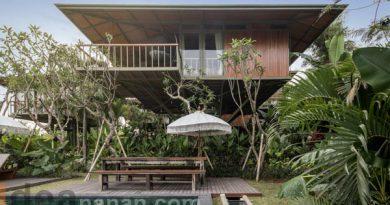 บ้านไม้ โมเดิร์น Treehouse